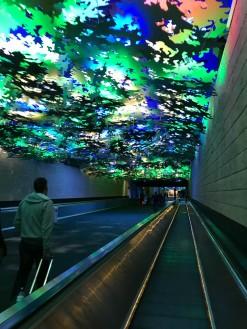 Walking from concourse to concourse in Atlanta has gotten brighter.