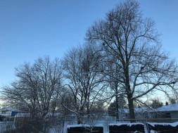 It snowed overnight, but it's a beautiful morning.