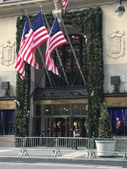 Lord & Taylor decorated for Christmas. Those are (fake) squirrels running through the ivy. Sammy?