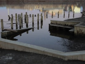 Great River Park is still somewhat underwater. The poles and chains are the railings of fishing docks.