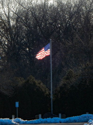 Stars and stripes, backlit by the morning sun.
