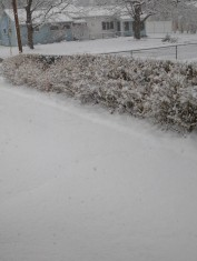 """We had about 5"""" of snow on Monday. It fell and, for the most part, it disappeared during the day."""