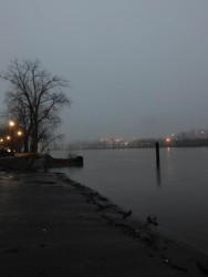 A slow sunrise along the river.