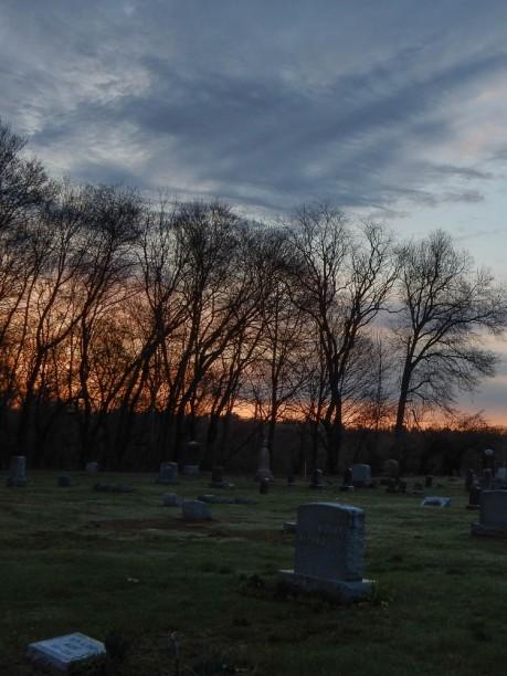 Looking across Elm Grove Cemetery.