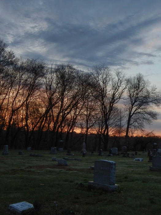 Looking across Elm Grove Cemetery.