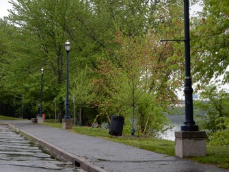 Great River Park is getting green (and wet).