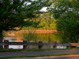 Great River Park is green and golden.
