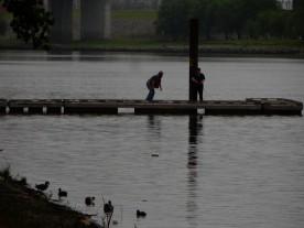 Looks like everybody is fishing today.