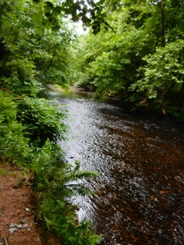 Scantic River is a quiet, meandering stream these days.