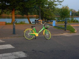 The Lime Bikes are showing up in the park on a regular basis.