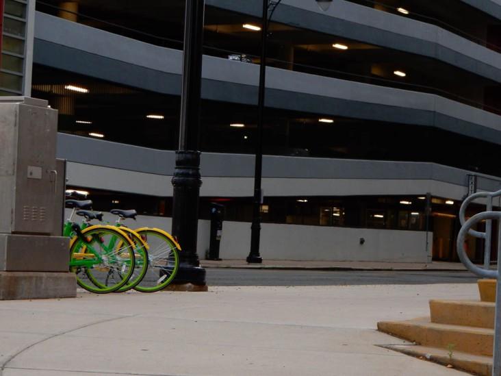 Lime Bikes!