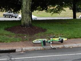 Lime Bike Down !!!