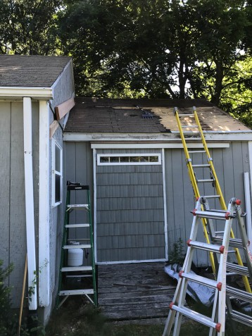 I had to strip the shingles off the workshop roof as high as the new rafter will go.