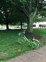 There you go, Lime Bike. All better.