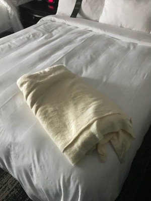 Prior to leaving for Boston, the Marriott app let me order up an extra blanket.