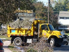 The Dept. of Public Works picked up the brush we cleared during the first two days. After that, people had to wait two weeks for a state-wide pickup.