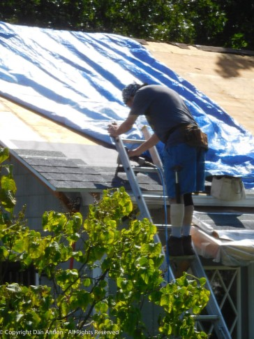 After weatherproof membrane, felt paper, drip edge and starter shingles, I'm ready to start nailing down the shingles.