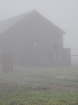 The tobacco barn's ventilation slats are open.