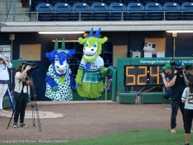 Chompers and Chew Chew - the Yard Goats mascots.