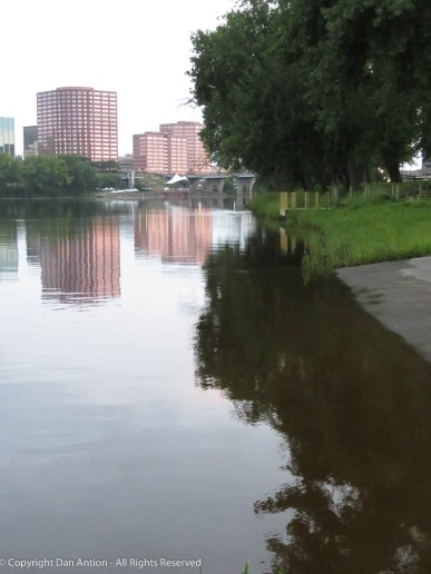 I like images that show the river at the shore.