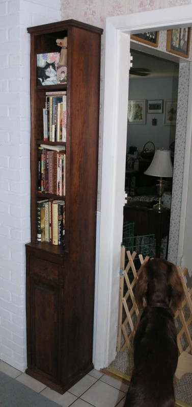 I made this bookcase (and the various molding) from some reclaimed cherry. That's Mollie, the Irish Setter we had before Maddie.