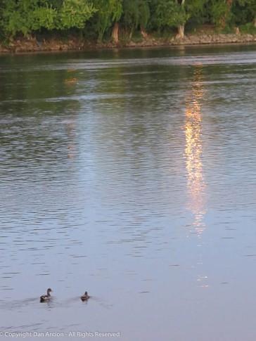 """Swim toward the light."""