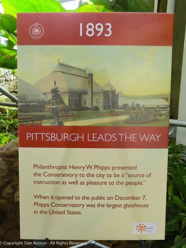 When it opened, Phipps was the largest glass building in the United States.