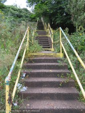 Pittsburgh has a lot of hills, and a vast number of steps. We had a set of stairs like this in our neighborhood while growing up.