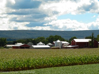 I love the farms in central Pennsylvania.