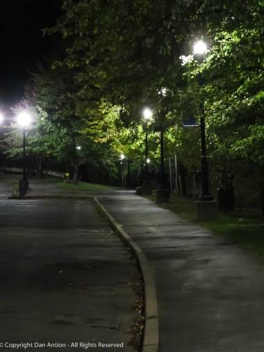 The walking/jogging path.