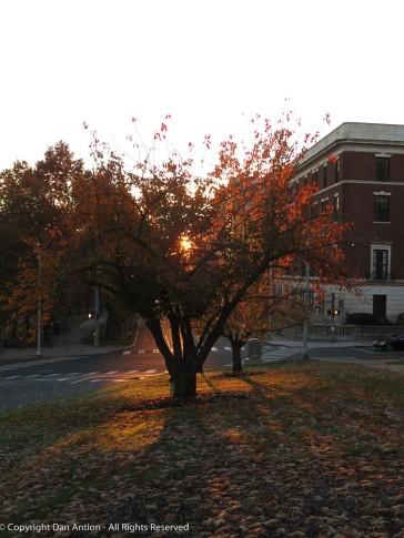 Sunrise in Hartford.