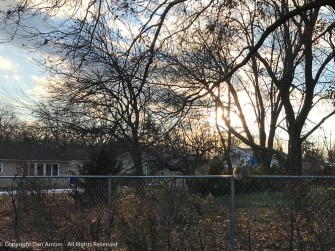 Sunset - if you look close, you can see a squirrel on the fence.