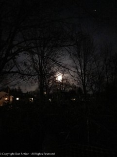 Thanksgiving full moon.