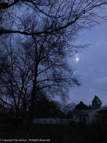 Early morning full moon.