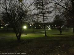 Bushnell Park in downtown Hartford.