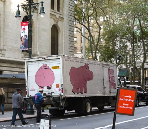A large pink hippo from the south side ;-)