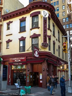 The Molly Wee Pub