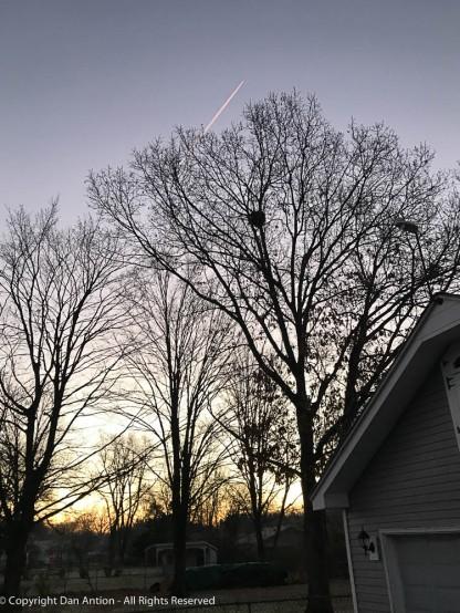 Early morning sunrise.