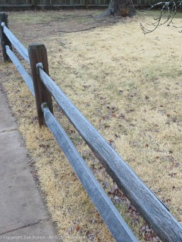 It was pretty cold before our walk. That's frost on that fence rail.