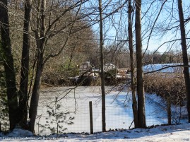 Rushing water can avoid freezing but not a still pond.
