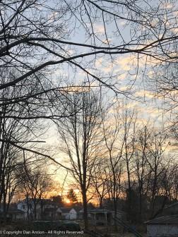 Sunrise in the back yard.