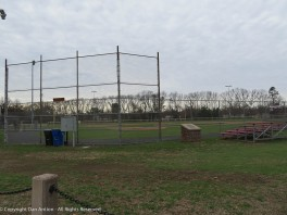 The ball field is ready for the birds.