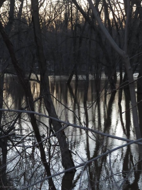 The Farmington River is well over its bank as it nears the CT River.