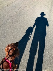 """""""Maddie, I'm trying to get a picture of our shadows."""" """"Yeah, but people want to see me."""""""