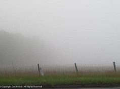 During my commute, the fog was getting worse.