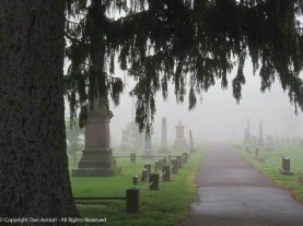 Entering Elm Grove Cemetery