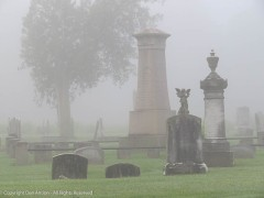 Cemeteries, in the fog are eerie places.