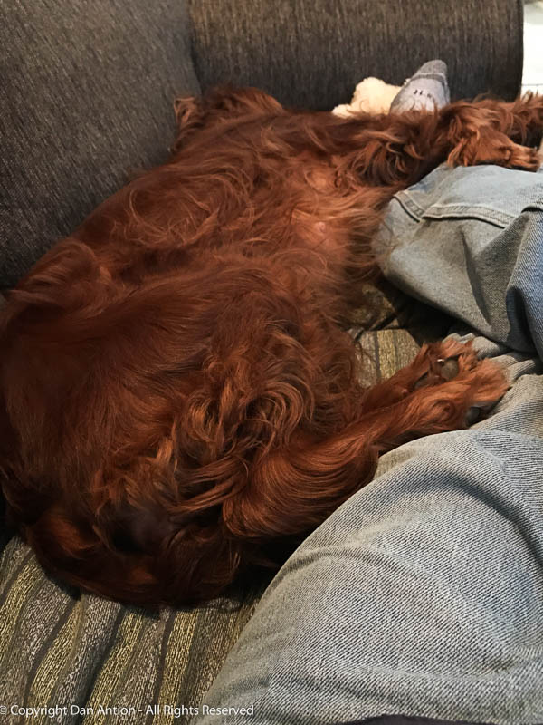 Maddie had a big day.