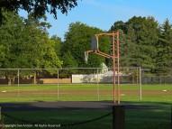 The baseball field looks like it's ready for those birds.
