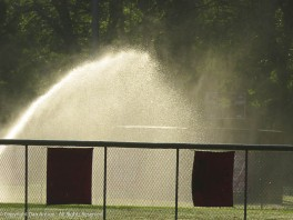 The fields are soaked, but I guess the sprinklers are on a timer.